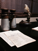 Dr. Wilson's field glasses and some of his bird checklists.