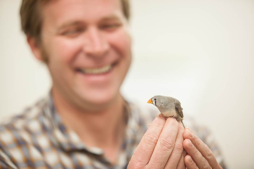 Noah Ashley with a zebra finch