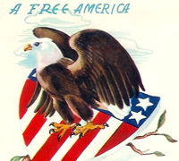 American bald eagle logo