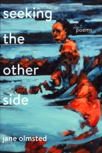 Seeking the Other Side: Poems book cover